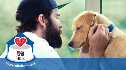 Hill´s Food, Shelter & Love - beard man loving his dog