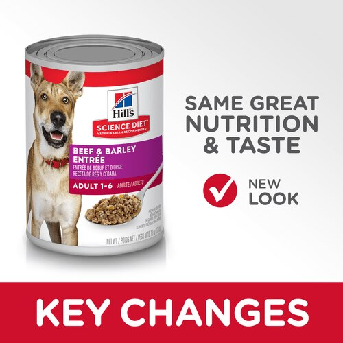 sd-canine-adult-beef-barley-entree-canned